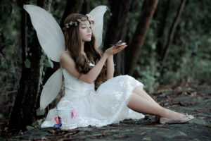 The spiritual meaning of butterflies